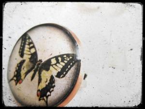 butterfliesring_art55f